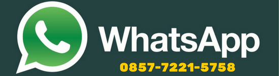 Whatsapp delta grosir